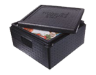 Transportbox ThermoBox 35x35x17,5cm innen
